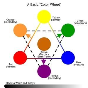 L'application des couleurs